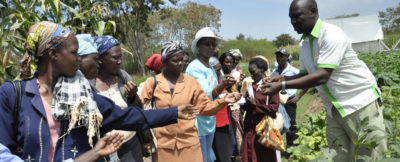 Training with women farmers in Kenya