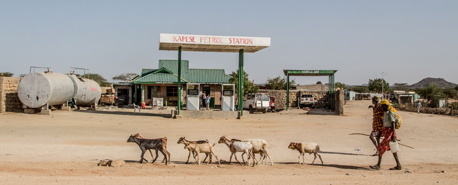 Petrol station in a dry landscape with goats in foreground